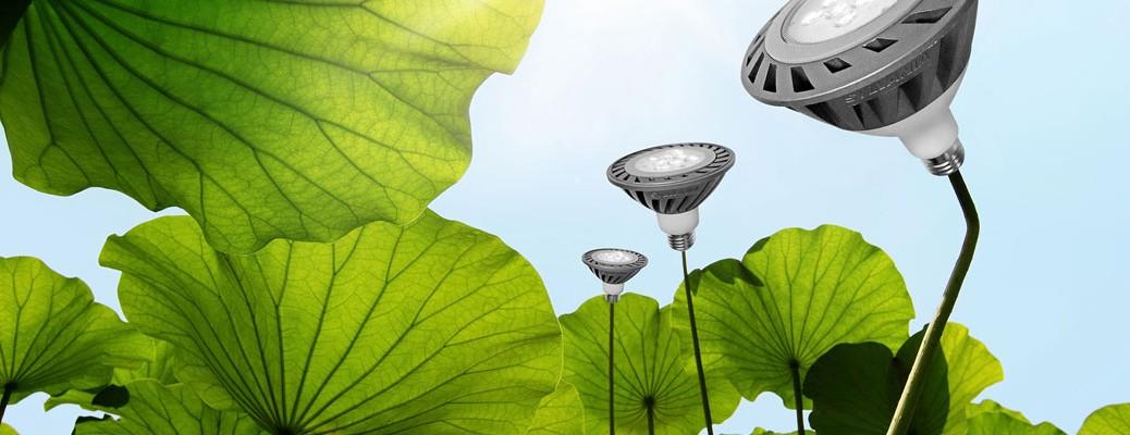 Estudio de eficiencia energética